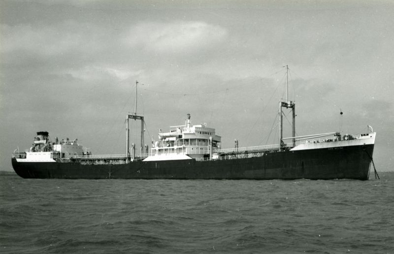 SAN VELINO, believed to be in the River Blackwater. Date: c1962.