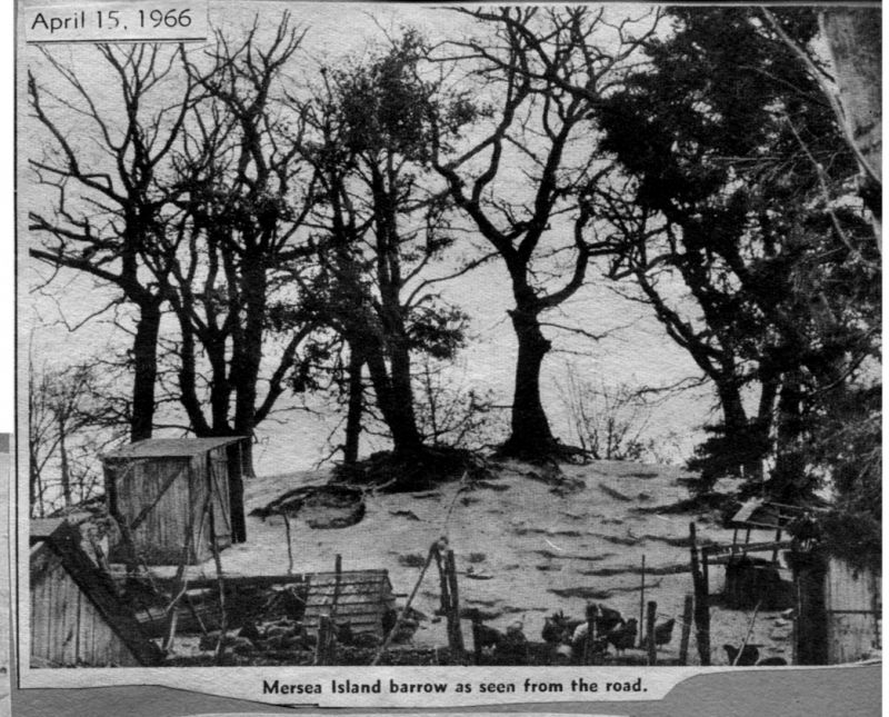 Mersea Island Barrow, as seen from the road. 