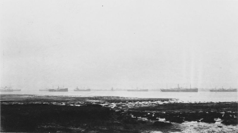 Tollesbury mud - ships laid up in River Blackwater. The engines-aft ship left of centre is thought to be BERWINDLEA which was in the river February 1932 to July 1935. 5,276 tons gross, built 1929. Date: August 1932.
