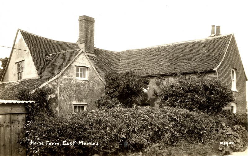 Home Farm, East Mersea. The farmhouse was demolished in the 1950s, roof tiles from the house were re-used on the present bungalow. Postcard 101902. 