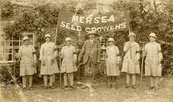 Mersea Seed Growers during WW1.