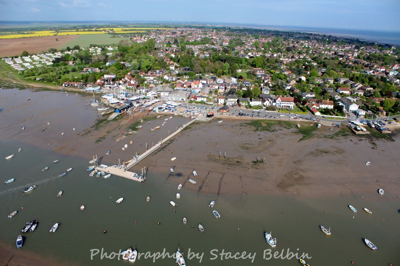 Hammerhad and The Hard.