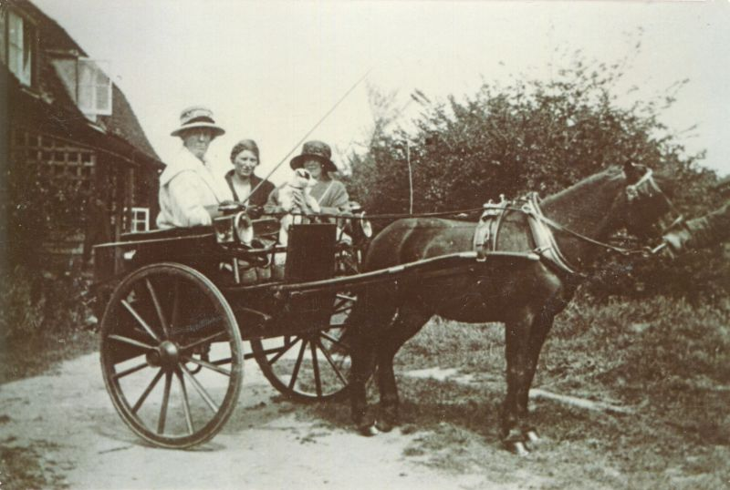 Mrs Josie Condon [ Mary Josephine ] driving a pony and trap outside Vine Cottage at the top of The Lane. Josie Condon rented Vine Cottage up to about 1926. The passenger in the centre is not known. On the right is Mrs Rhona Keenlyside, daughter of Josie. The pony's name was Judy.