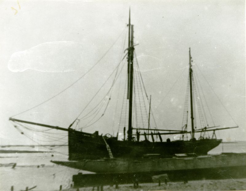 BLACK FOX, owned by a Captain Barnes, who was associated with Lord Shackleton. Sidney Mussett's grandfather Tom Mole was cook and steward aboard her in 1956 or 1957. She moved from Mersea (not in the best of repair) and was wrecked on the South Coast. She was to be used for chartering trips.