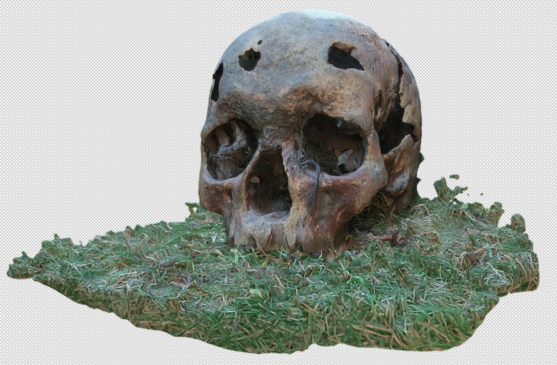 BBC Countryfile Winter Diaries on 15 Feb 2017 featured the Citizan project and recent finds on the mud off Mersea Island. This screenshot shows a skull, found by local oysterman Daniel French when out dredging. It is an Iron Age skull, dated to 290 to 350 BC.