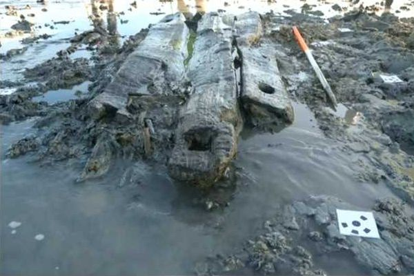 A screenshot from Anglia News 15 Feb 2017 showing planks discovered by local oysterman Daniel French in the mud off Coopers Beach, East Mersea. 