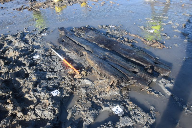Timbers found in mud at East Mersea