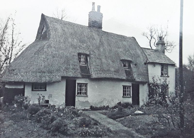 The Thatches, now Bucklands, Little Wigborough, on the corner of Copt Hall Lane. 