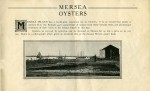 Brierley Hall Estate brochure Page 19. Mersea Oysters.  CW2_BHE_019