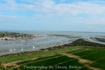 Feldy marshes looking southeast to West Mersea Hard and the Blackwater.