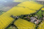Wellhouse Farm.