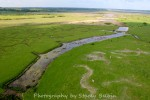 Reeveshall Marsh, looking east to Pyefleet and River Colne.