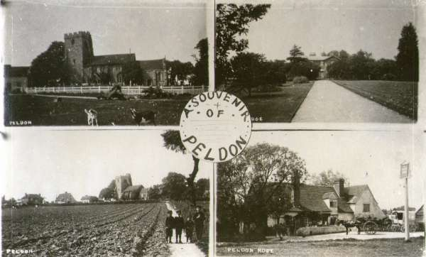 65. ID PH01_PWC_025 A Souvenir of Peldon. Multiview postcard.