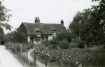 9. ID IA003724 Cottage in Salcott where Nancy Cullum and her mother lived. Date not known but probably c1941. Pansies are growing in front of the cottage. See Farming ...